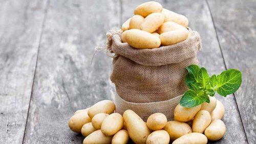babypotatoes-recipes