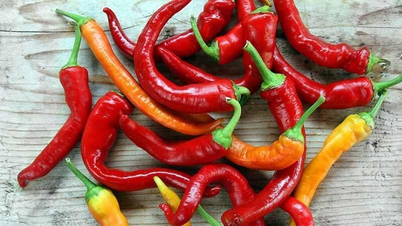 chilipepper-recipes
