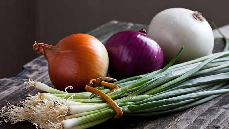 onion-recipes